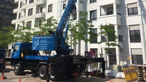 MKV Söhn: Montagekran vom Profi mieten